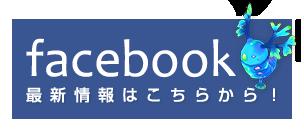 Zoic Facebook